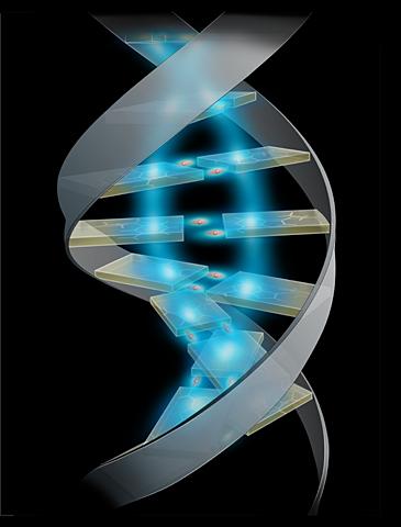 انجمن ژنتیک ایران